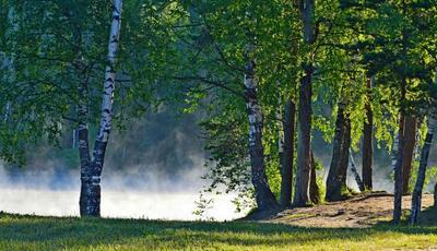 У озера.......
