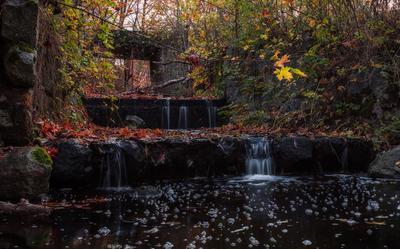 Ручей у усадьбы Фридрихштайн Природа пейзаж река осень