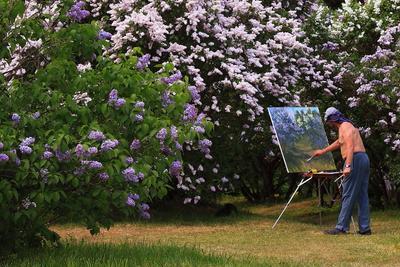Прекрасная пора !!! весна пейзаж сирень художник красота