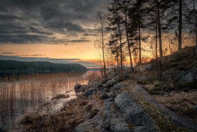 Закат в Кирьявалахти карелия ладога кирьявалахти залив закат скалы камни деревья небо облака пейзаж природа