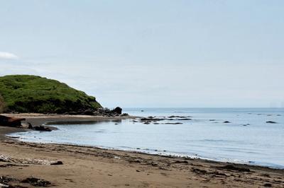 Прошлым летом на морском берегу...