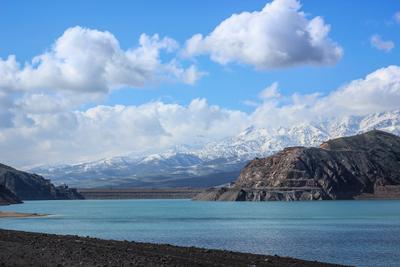 Весенняя красота Узбекской природы