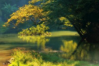 *Старый пруд пруд