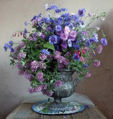 *** Натюрморт васильки клевер лето букет цветов луговые цветы