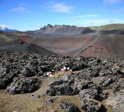 Земля, рожденная из пламени Исландия вулкан