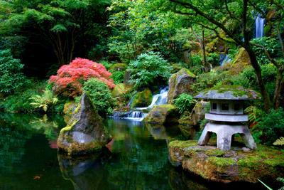 Японский сад Японский сад