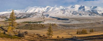 Курайский Хребет (Алтай) Алтай горы Курайский Хребет