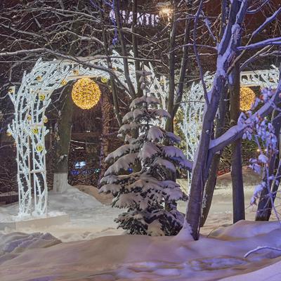 Накануне Рождества Январь ёлка снег огни шары