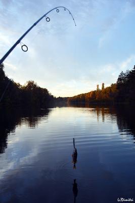 Удачная рыбалка на осенней реке Спиннинг окунь река осень закат рыбалка shimano