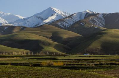 *** Горная маевка Киргизия