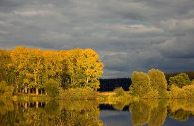Вечернее солнце вечер, озеро, солнце, осень, закат