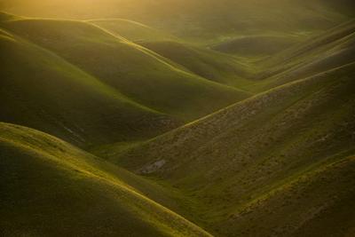 Зеленый бархат Оренбургская область Долгие горы