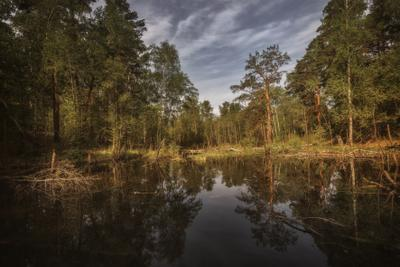 Отражение озеро горы лес природа закат рассвет красота приключения путешествие облака