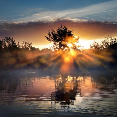 Рассветные крылья.... рассвет свет туман утро пейзаж