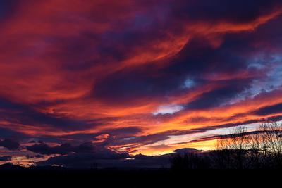 28.01.2021. закат. закат небо