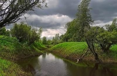 Хмурое лето Сибирь лето пейзаж