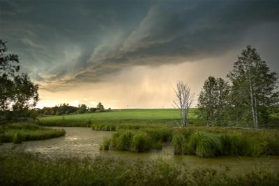 В преддверии грозы Гроза тучи болото поле деревья закат лето ветер небо трава
