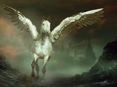 If I Could Fly Digital Photo Art Horses Eltons Fantasies