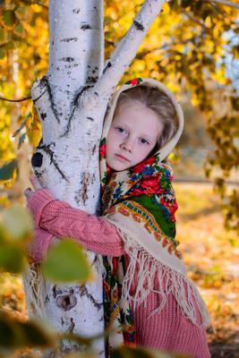 У берёзы осень берёза русская девочка