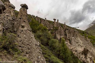 Каменные грибы, Алтай каменные грибы Алтай Аккурум курумы