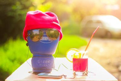 Боксёр на отдыхе Бокс солнце лето