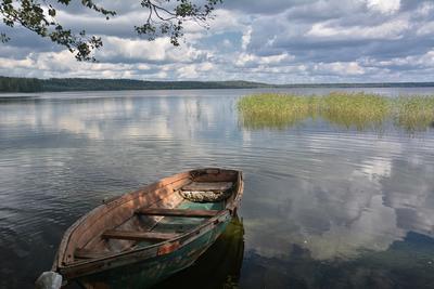 Летние воспоминания... Лето озеро рыбалка
