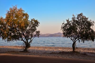 Утро на острове Кос. Греция.