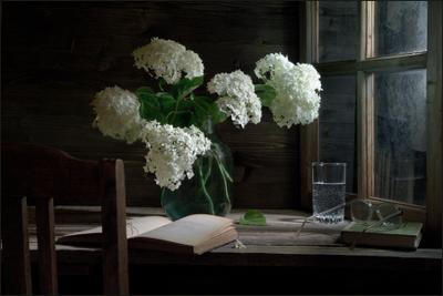 Бульденеж натюрморт лето дача цветы книга стакан стол стул окно