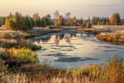 Смена сезона осень октябрь