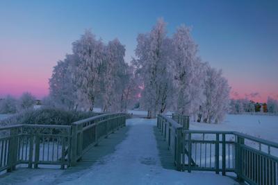 Морозное утро Оулу