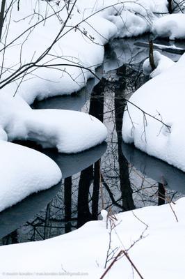 оттепель / thaw Russia brook nature park reflection snow thaw water winter Россия вода зима отражение оттепель парк природа ручей снег