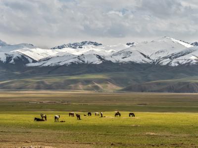 Киргизия. Тянь Шань.
