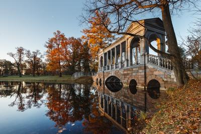 про осень Царского Села... пушкин царское село екатерининский парк осень рассвет мраморный мостик