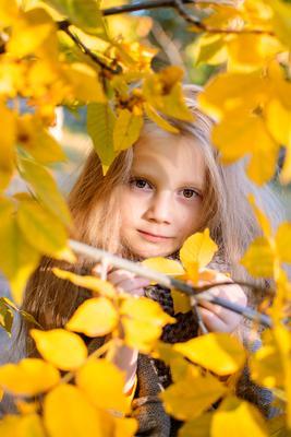 Осень в глазах... осень берёза русская девочка