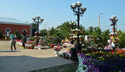 соборная площадь Иркутск