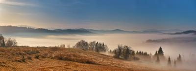 Тишина осеннего утра Горы Карпаты Октябрь Осень Панорама Туман Украина Утро