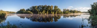 Раннее утро. река дымка пейзаж деревья вода