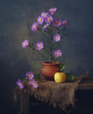 сентябрины... натюрморт цветы осень