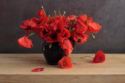 Poppy Traditional натюрморт букет цветы красный маки память