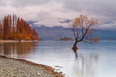 Outcast New Zealand, Autumn, Wanaka, lake