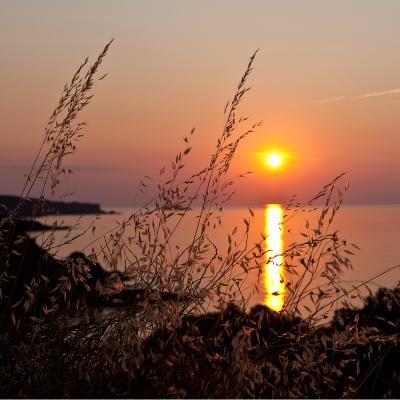 Ses Vistes рассвет Испания, Каталония, море, рассвет