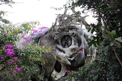 Crazy House Далат Crazy паук  дерево природа