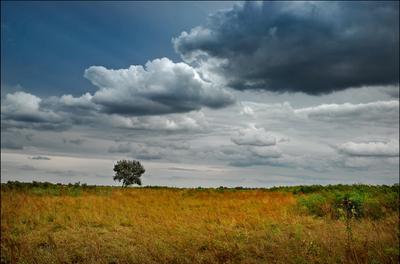 Один в поле облака