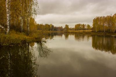 ***Осенний пруд