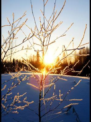 Перекресток Западная Сибирь, закат