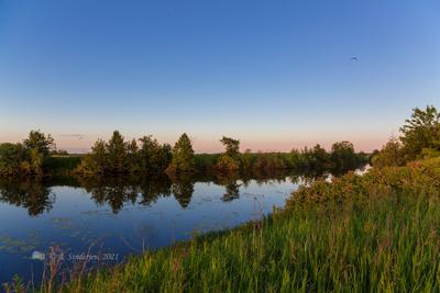 Летний вечер на речке летний пейзаж река