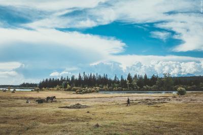 Путевые заметки... небо облака лес вода кони люди поле трава картина село дорога путешествие мото