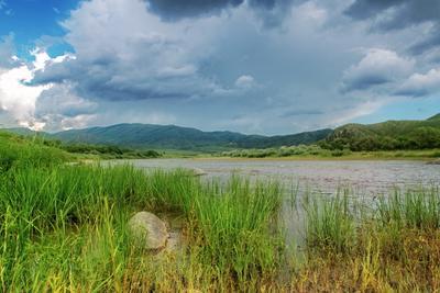 Вода поднялась тучи трава река пейзаж небо лето камни