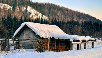 Домик в Сибири природа дом Сибирь архитектура пейзаж деревня
