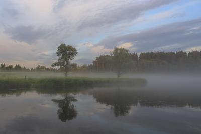 Летние туманы москва река